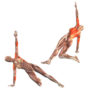 47 yoga beginner  half side plank pose on right hand