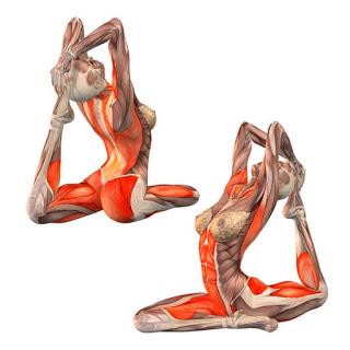 49 yoga advanced  onelegged king pigeon pose left foot